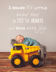 San Ramon Newborn Photographer - Baby N 40 - Quote copy